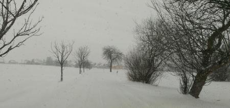 sneh_2