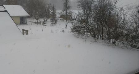 sneh_3